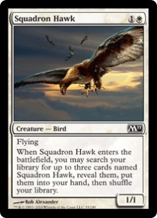 Squadron Hawk card